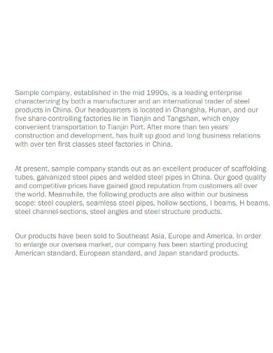 business supplier visit report