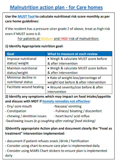 care homes nutrition action plan