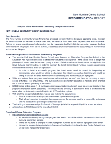 community business plan recommendation report