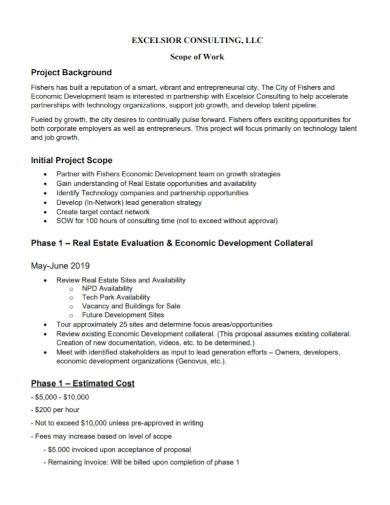 consulting initial project scope of work