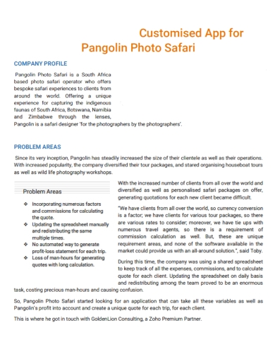 consulting photography company profile