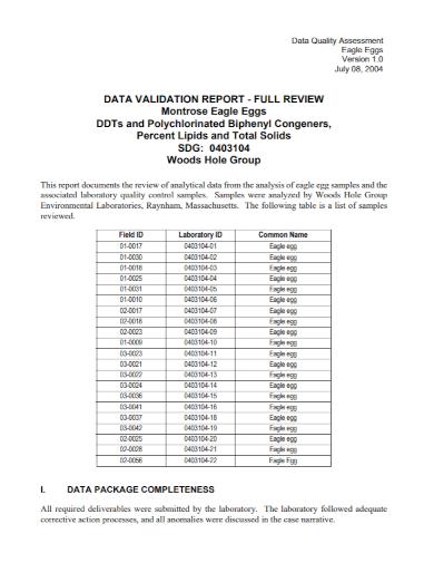 data quality assessment report