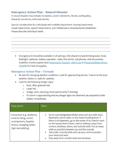 disaster emergency action plan