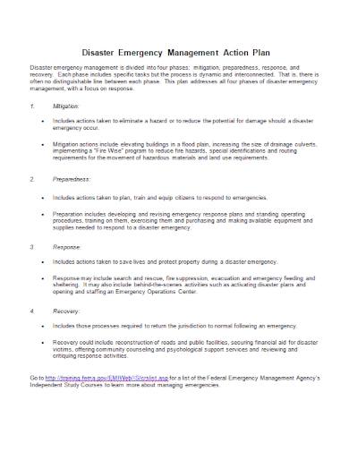 disaster emergency management action plan