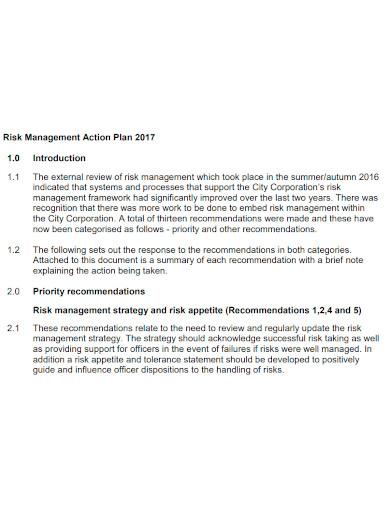 editable risk management action plan