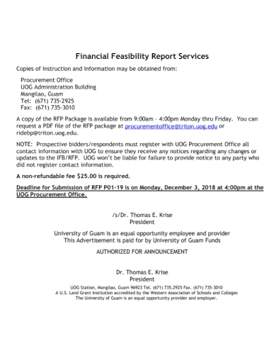 financial feasibility report services