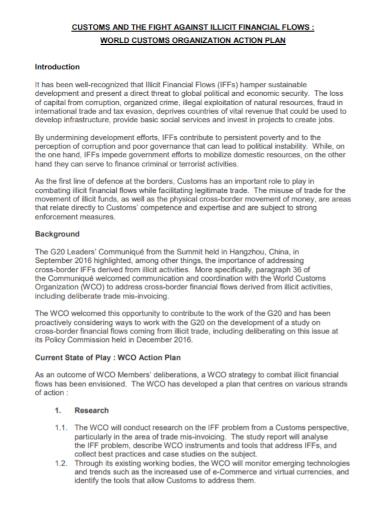 financial organization action plan