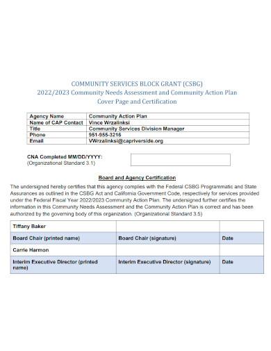 formal community action plan