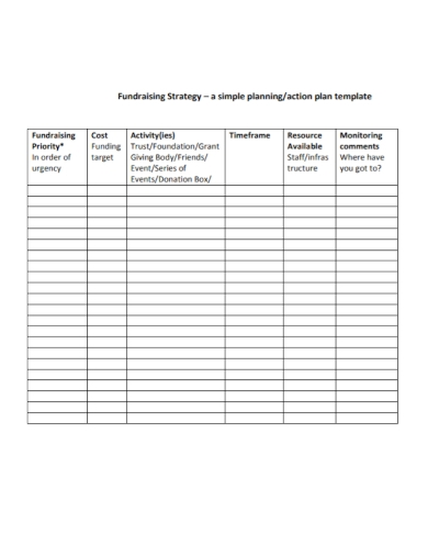 fundraising strategy action plan