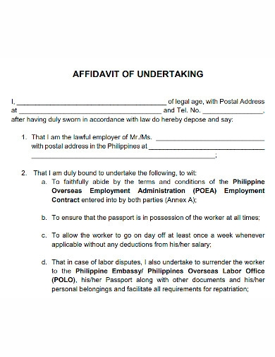 general affidavit of undertaking