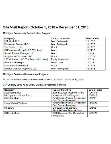 general business visit report