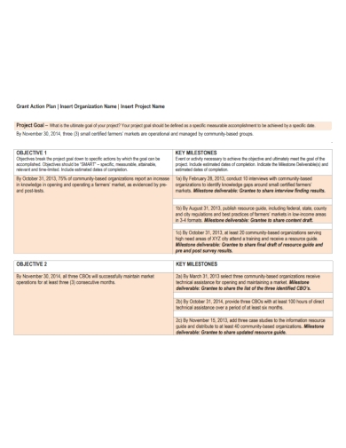 grant project organization action plan