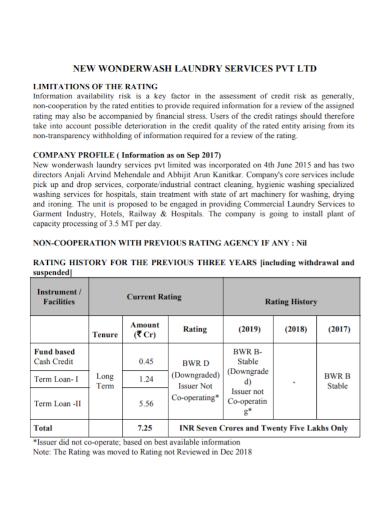 laundry services company profile
