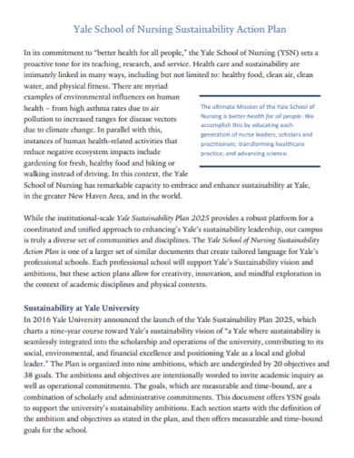 nursing sustainability action plan