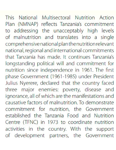 nutrition action plan format