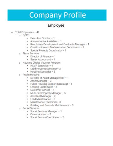 one page employee company profile