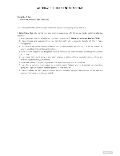 personal statement affidavit template