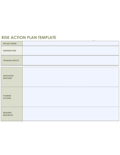 printable risk action plan