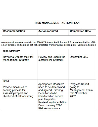 printable risk management action plan