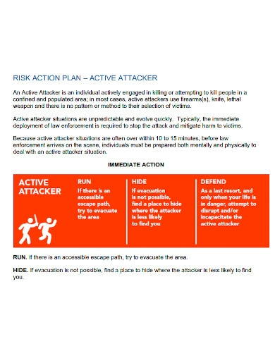 professional risk action plan