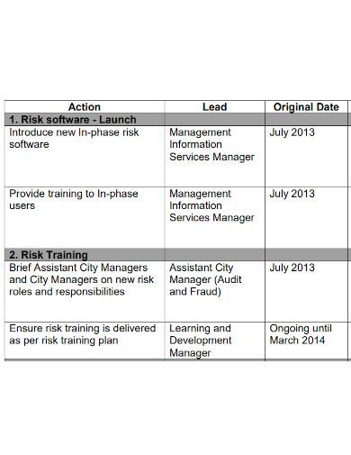 professional risk management action plan