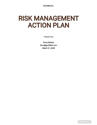 risk management action plan sample