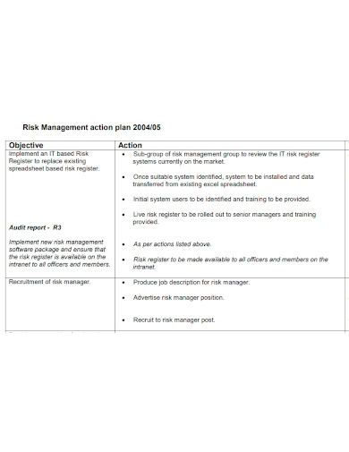 risk management group action plan