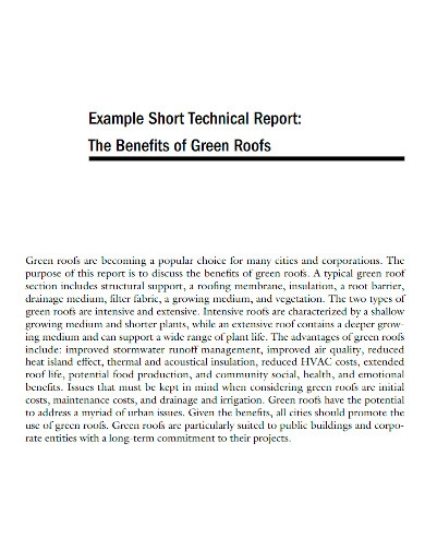 short technical report