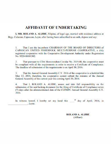 standard affidavit of undertaking