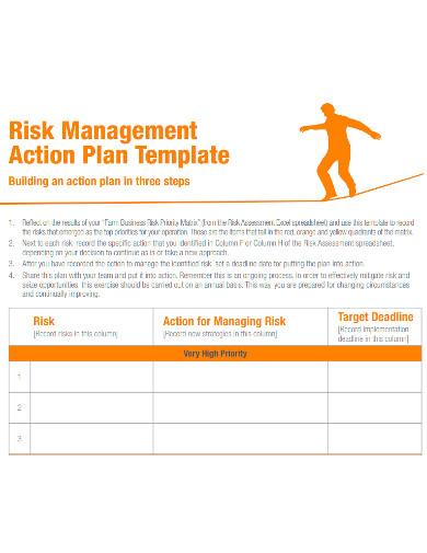 standard risk management action plan