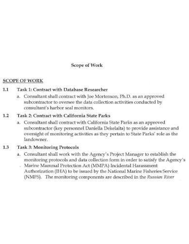 strategic contract scope of work
