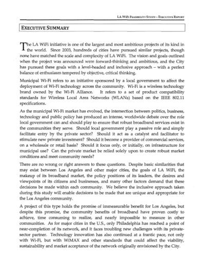 wireless network feasibility report
