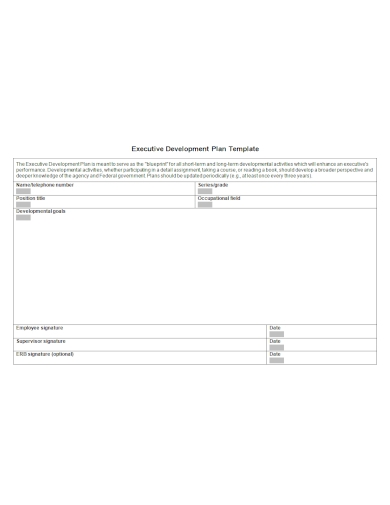 editable executive development plan