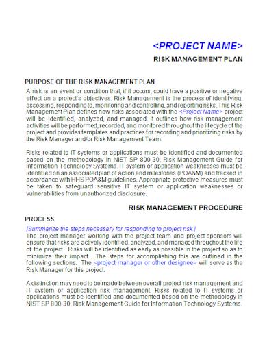 editable project risk management plan