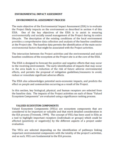 environmental ecosystem impact assessment