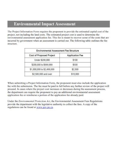 environmental project impact assessment
