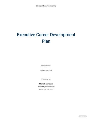 executive career development plan template