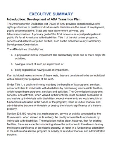 executive development transition plan