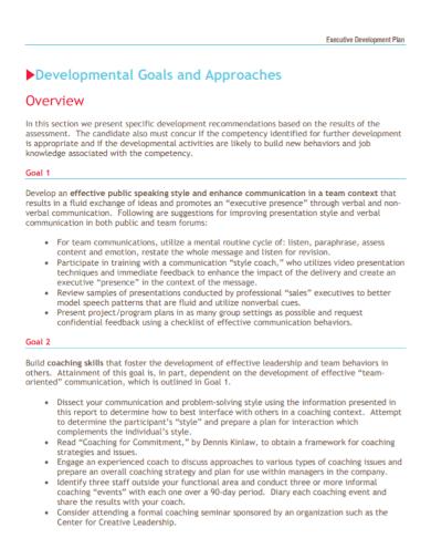 executive goals development plan