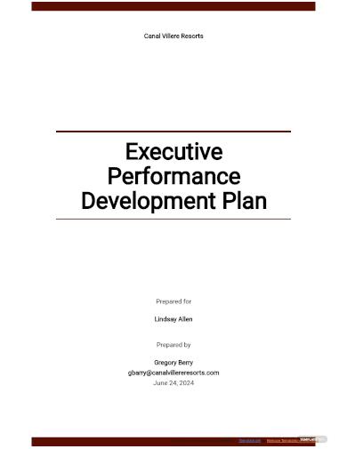 executive performance development plan template