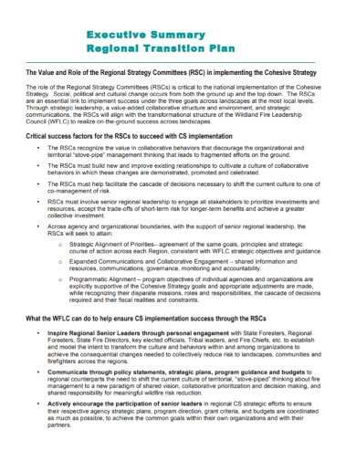 executive summary regional transition plan