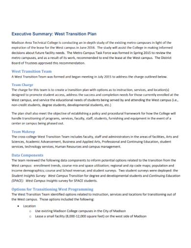executive summary transition plan