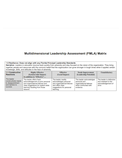 multidimensional leadership assessment