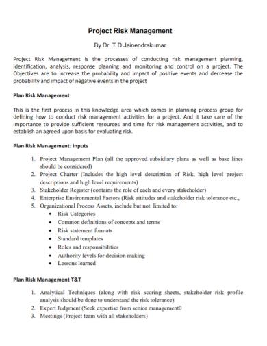 project risk management plan