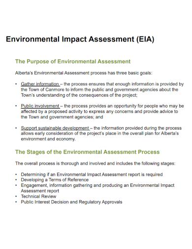 sample environmental impact assessment