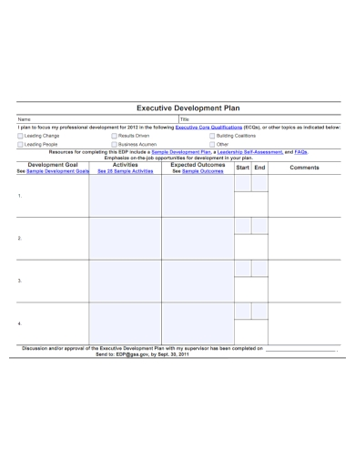 sample executive development plan