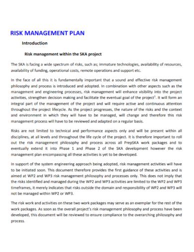 sample project risk management plan