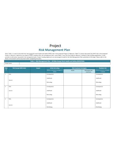 standard project risk management plan