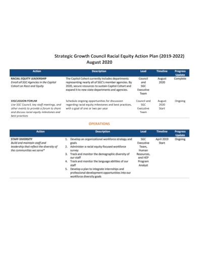 strategic council equity action plan