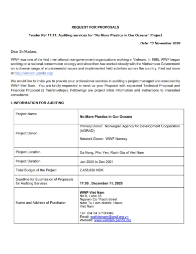 tender auditing services proposal